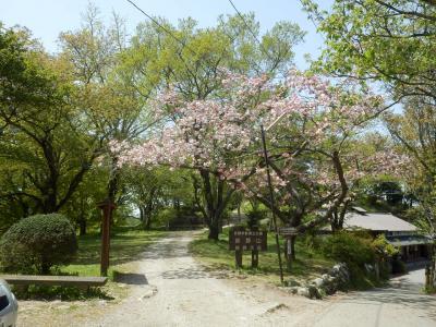 奈良・吉野の散策53