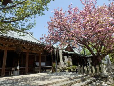 奈良・吉野の散策60