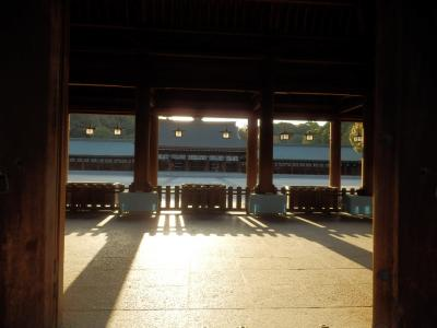 橿原神宮10