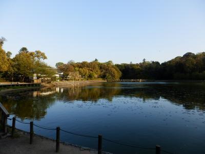 橿原神宮11