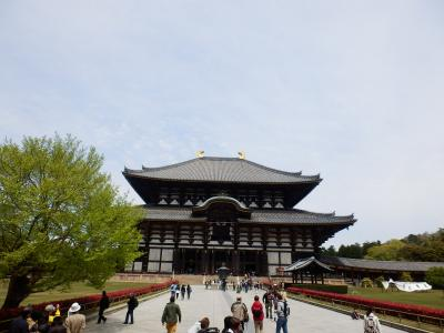 奈良公園14