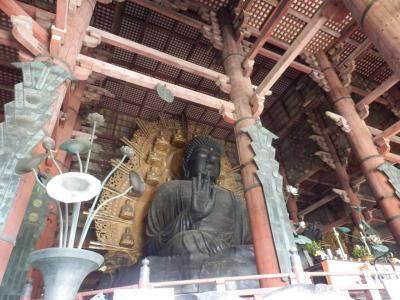 奈良公園15