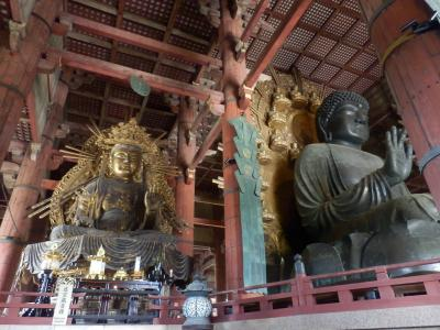 奈良公園16