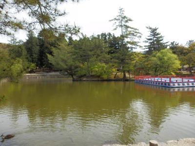 奈良公園21