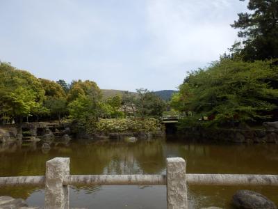 奈良公園26