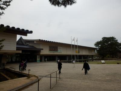 奈良公園30