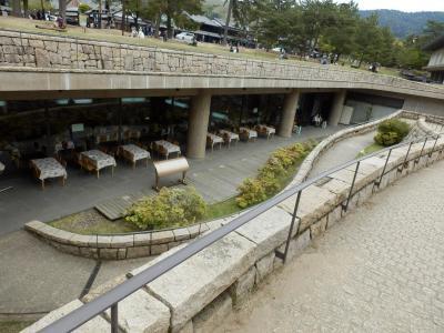 奈良公園31