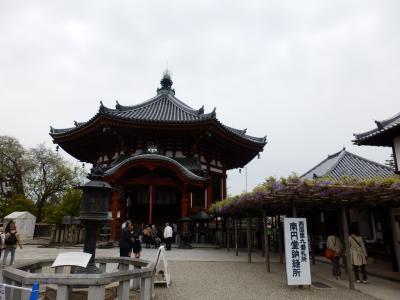 奈良公園37