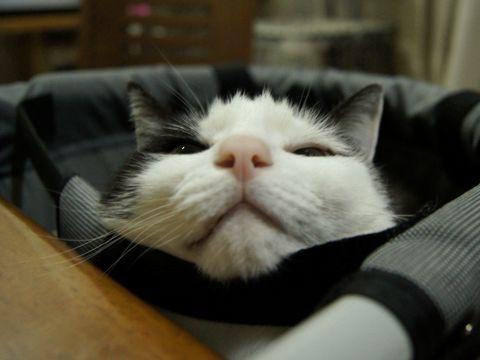 そのまま寝るの?!