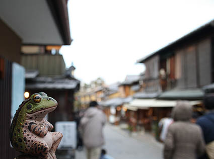 京都カエル2