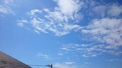 20140926pic.jpg