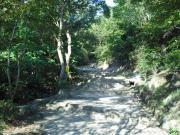 鉢伏山への階段1