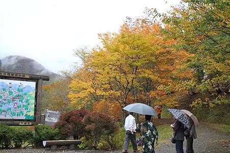 観音沼森林公園 10 15 003