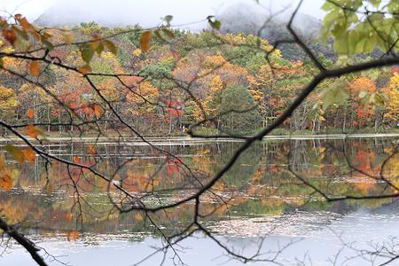 観音沼森林公園 10 15 017
