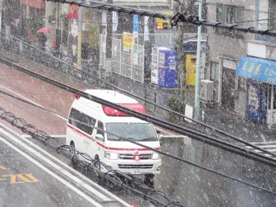 東京山谷から見た雪