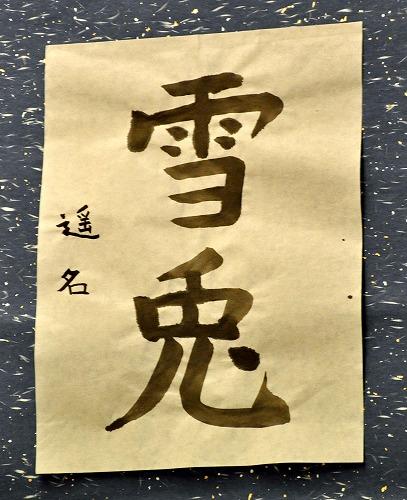 20120405002yukiusagi.jpg