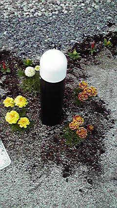 庭ライトに花を