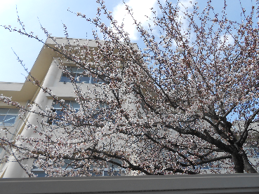 201304112022246ae.png