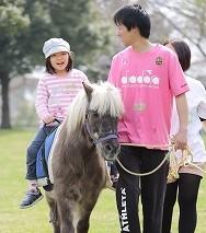 s-ひき馬