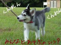 fuka_010.jpg
