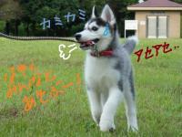fuka_011.jpg