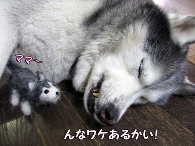 トリュフの赤ちゃん