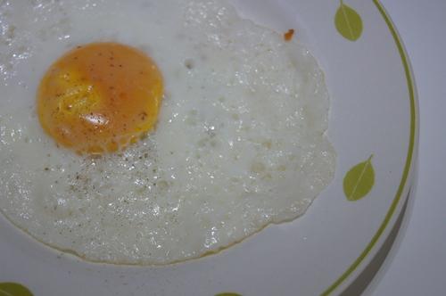 egg07