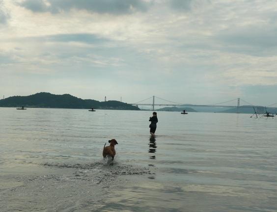 豪快に水しぶきを上げながら走るシャロリー