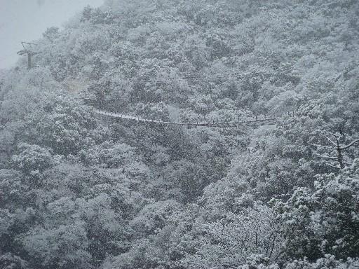 雪のつり橋jpg