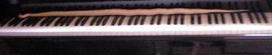 DSCN7501鍵盤