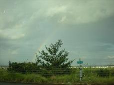 DSCN7665虹