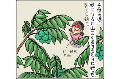 kaki_m_くるみ1_convert_20140919193155