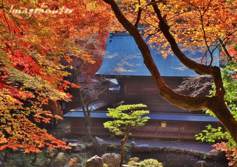 内津神社庭園