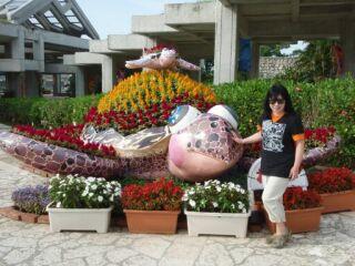 20100512美ら海水族館海亀花壇