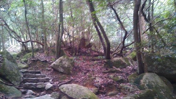 20110819紅葉谷公園(広島県廿日市市宮島)