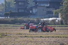 torakuta-1111218-l.jpg
