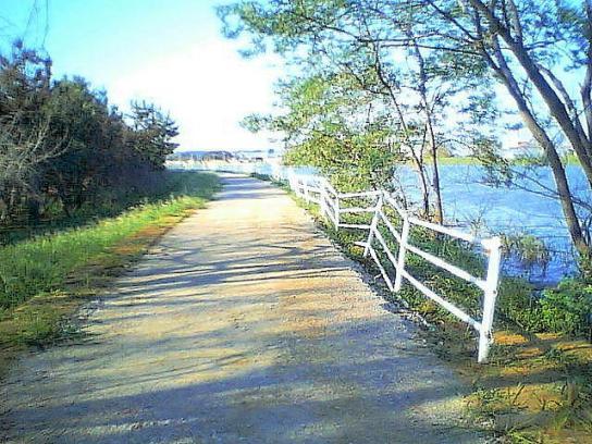 shinnsai20110928no40_4