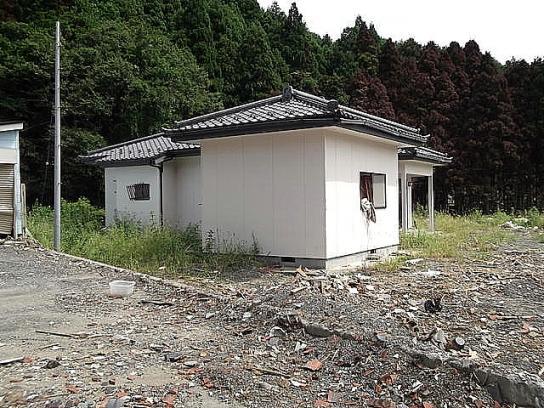 shinnsai2011102302no46