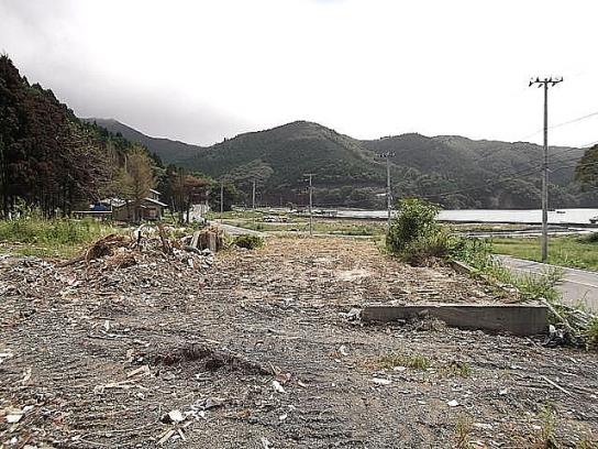 shinnsai2011102303no46