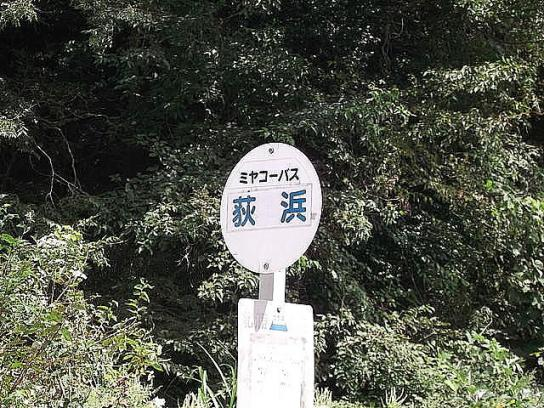shinnsai2011102601no47