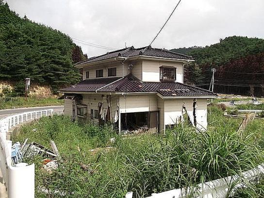 sinsai2011110401no49