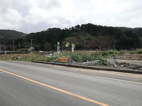 sinsai2011110403no49