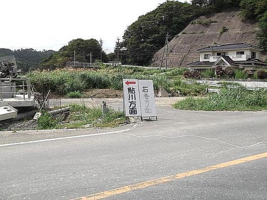 sinsai2011110405no49