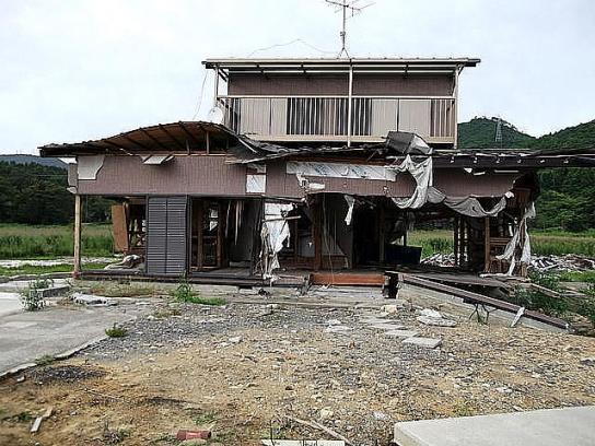 shinnsai2011110903no50