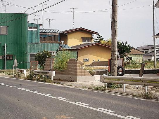 shinnsai2011111406no51