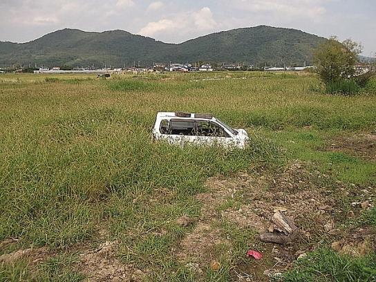 shinnsai2011111407no51