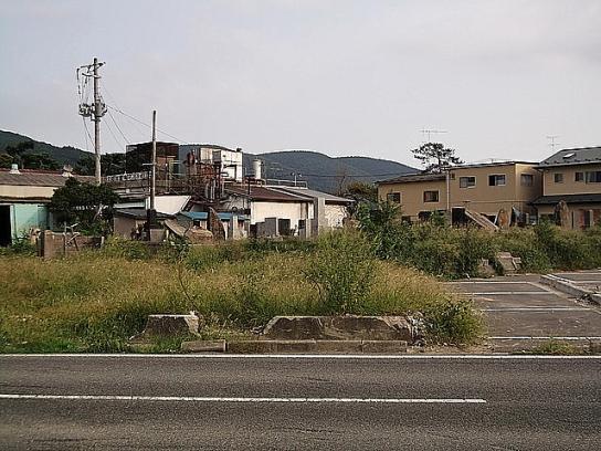 shinnsai2011111707no52