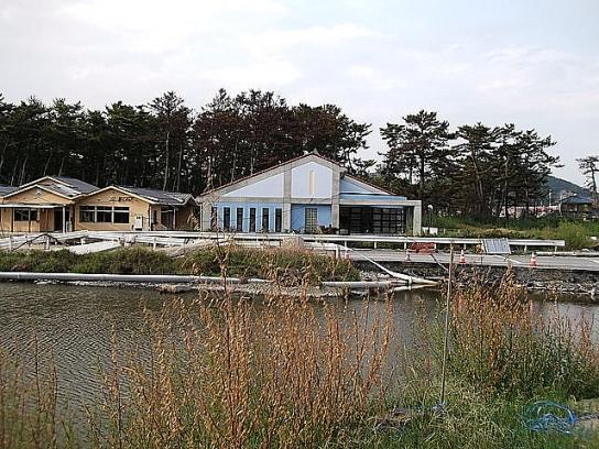 shinnsai2011111804no53