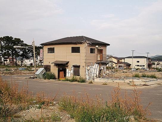 shinnsai2011111805no53