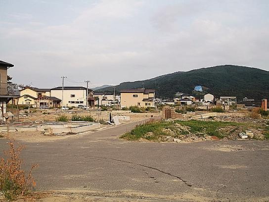 shinnsai2011111806no53